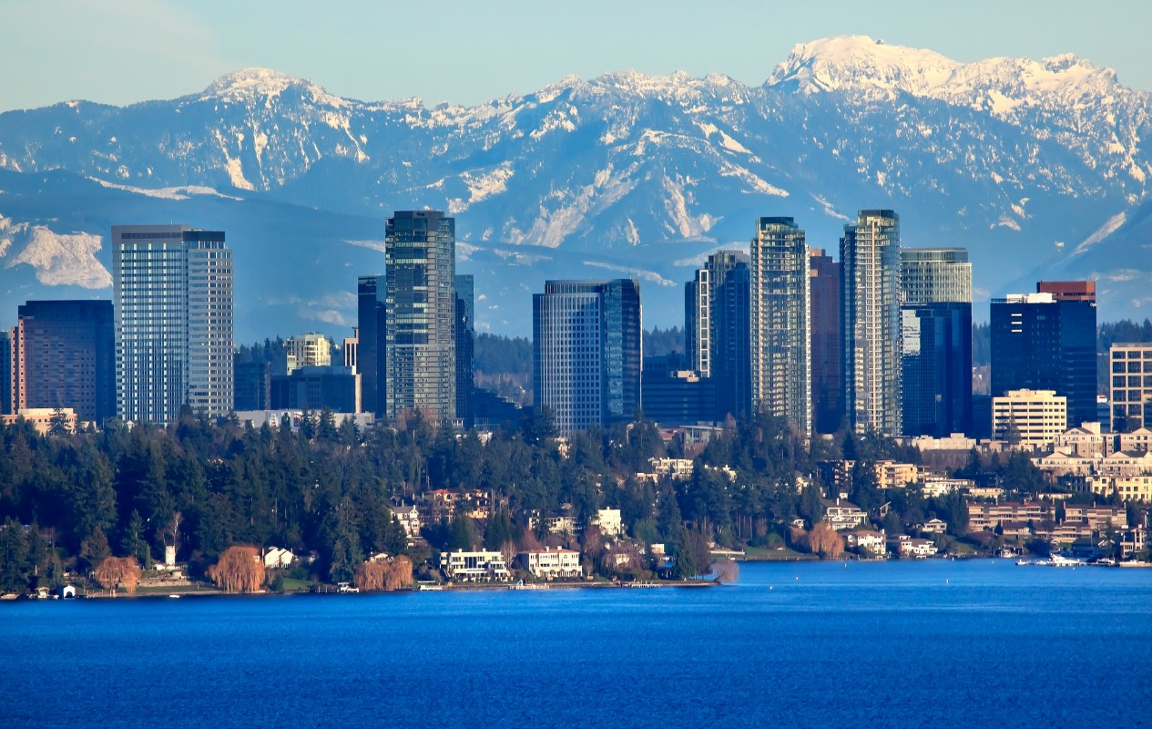 Top 15 Bellevue Real Estate Agents On Social Media