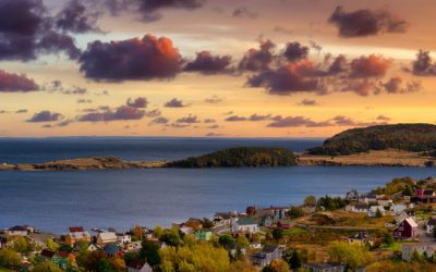 Top 20 Newfoundland and Labrador Real Estate Agents On Social Media